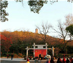锡惠公园的清晨