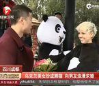 乌克兰美女扮成熊猫求婚