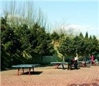 公园将提升景观