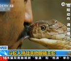 斗蛇人亲吻眼睛王蛇