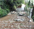 景区巨石坠落致游客死亡