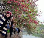 三峡大学桃花节开幕