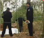 新娘遇害后尸体被埋竹林