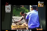 哈尔滨城管打人 城管局回应:雇来的保安