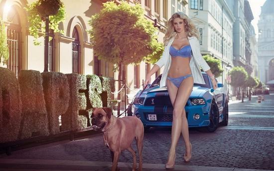 豪放的激情 欧美性感车模对决改装野兽