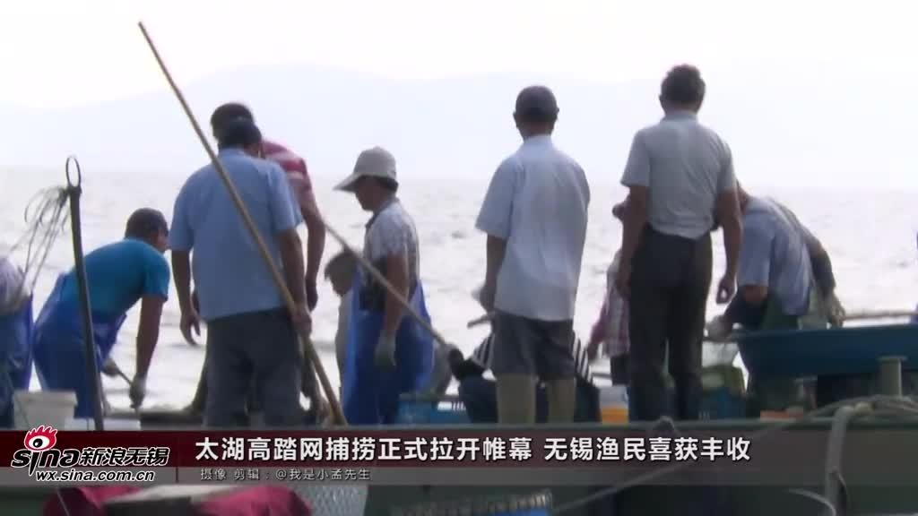 太湖高踏网捕捞正式拉开帷幕 无锡渔民喜获丰收