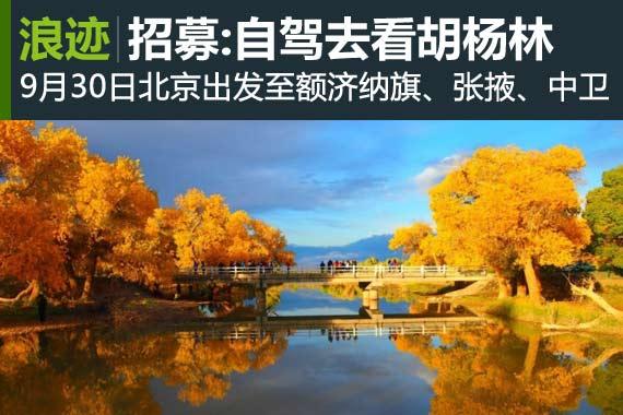 十一组团活动招募:自驾去看胡杨林