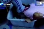初中女生被同学逼跪地吃垃圾 不时遭蹬踹