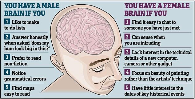 大脑也分性别