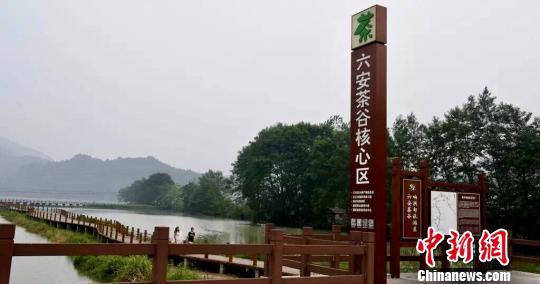 六安茶谷风光 王峰 摄