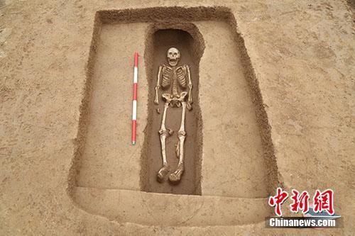 陕西高陵杨官寨遗址中,带二层台竖穴土坑墓M388。供图