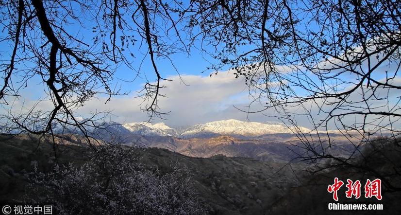 西北边陲颇具地域特色的季节风景画