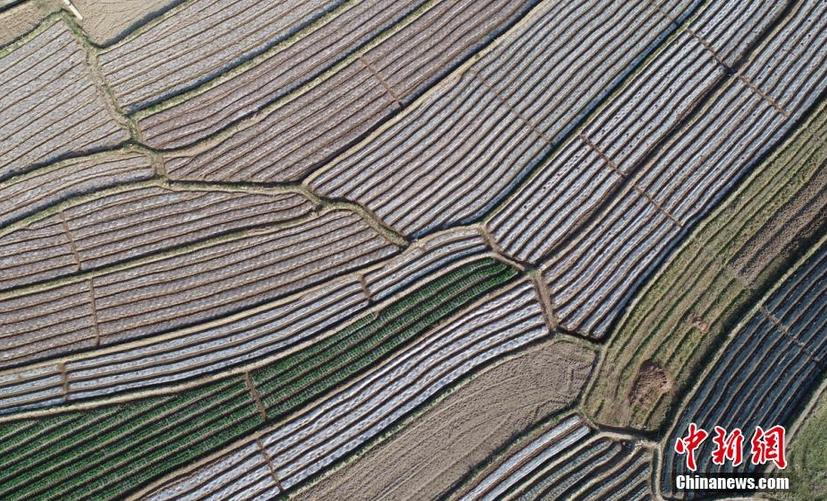 图为空中俯瞰德昌田园风景如画。 刘忠俊 摄