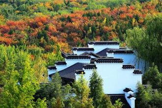 北京今秋赏红比往年来得早了一些
