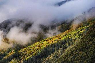 川西高原 惊艳了整个秋天