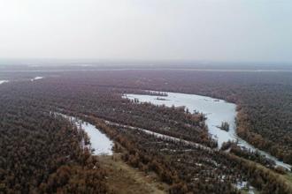 塔里木河千里冰封景观