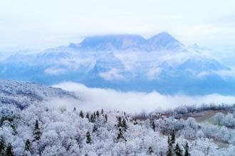 湖北五峰冰林美景 似水晶铺满地面
