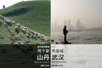两个家两座城:武汉和山丹