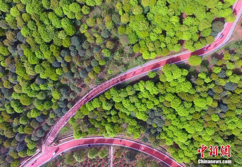 图为航拍彭州市葛仙山绿道。
