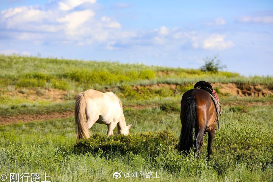 十二座连营等古迹依稀可见,在草原上骑马,近距离的接触草原之