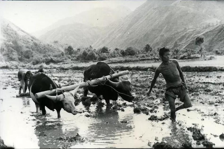 筑天路!这支部队两年打通西藏咽喉工程