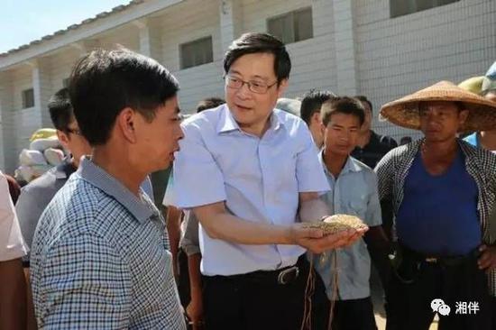 """2013年,时任省长的杜家毫在衡山县长青乡""""五七""""仓库,了解粮食收购情况"""