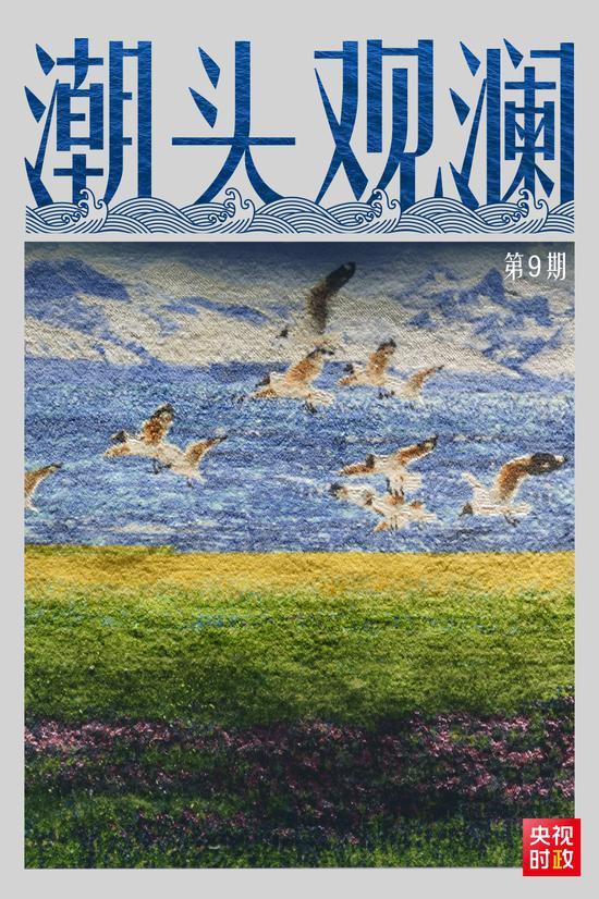 潮头观澜丨藏毯传奇 民族瑰宝图片