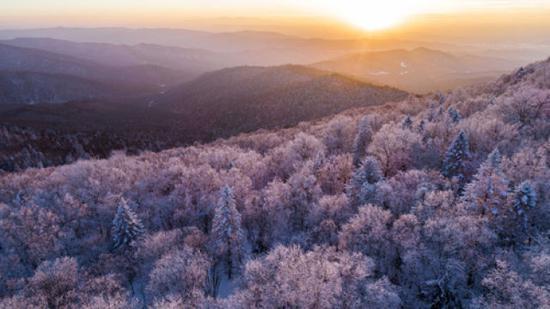 这是长白山林区雾凇景色(2018年1月13日无人机拍摄)。新华社记者 许畅 摄