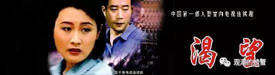 1991年最佳连续剧奖:《渴望》。