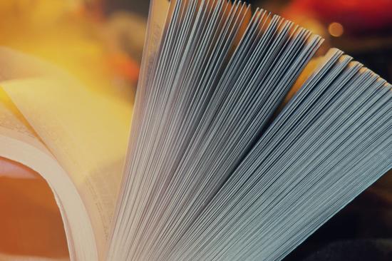 昆明市2020年8月份主城区网格化管理综合考核成绩及郊县区城市综合管理考核成绩通报