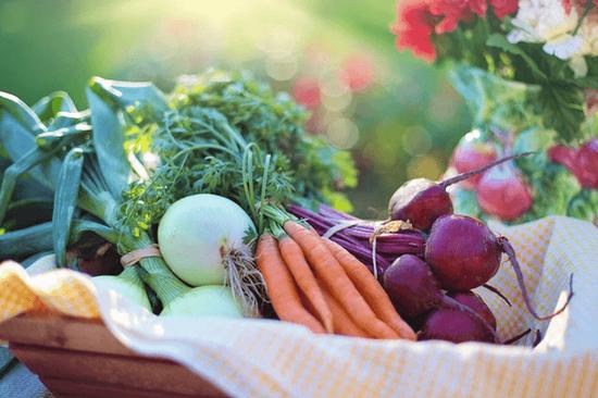 路边的野菜不要采,春季尝鲜需注意科学采食