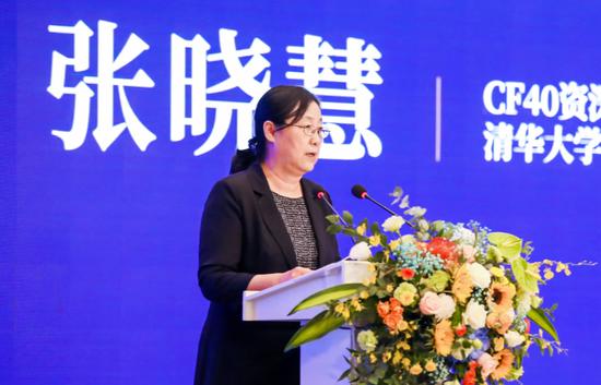 张晓慧:将家庭部门的短期储蓄变为长钱发展直接融资市场