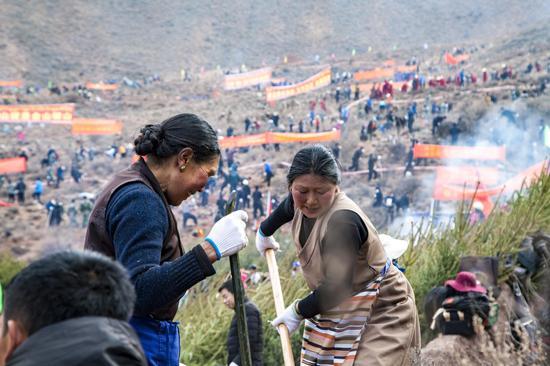 二等奖作品:藏民的绿色行动 作者:李龙乾