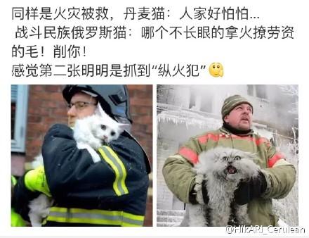 囧哥说事:2016全球最美100人!内地林允第1 刘亦菲AB排后图片