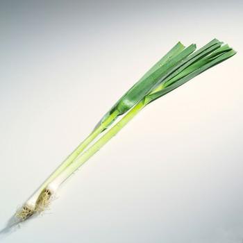 那么,一颗小葱可以治疗哪些疾病?