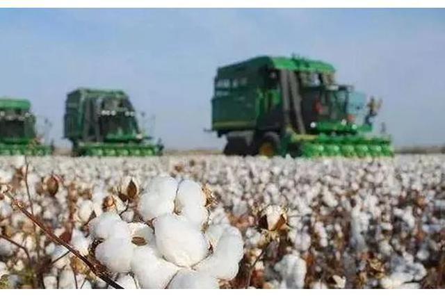 大型农机具助力阿瓦提县140余万亩棉花全面开播