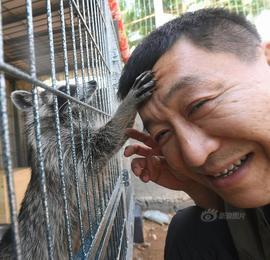 沈阳男子用19年救万只动物