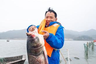浙江东钱湖新年冬捕第一网来啦