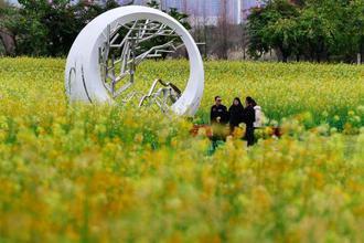 福州:花海公园变花海