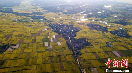 从空中俯瞰,一派丰收的美好图卷景象。