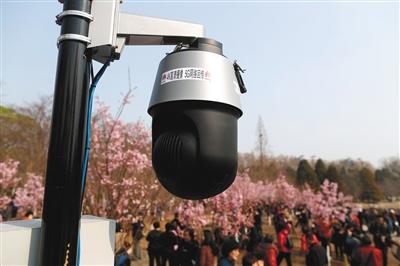 昨日,玉渊潭公园内4K高清摄像头利用5G技术回传实时画面。