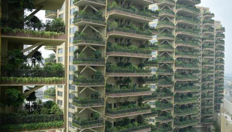 """成都""""垂直森林""""住宅小区郁郁葱葱"""