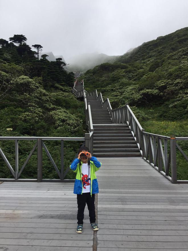 大手拉小手,与东风启辰D60一起趣享自然之旅
