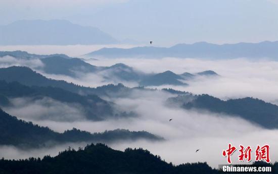 山峰在云雾中若隐若现,犹如人间仙境。