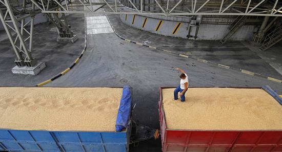 俄罗斯粮食连续丰收 满洲里口岸进口井喷