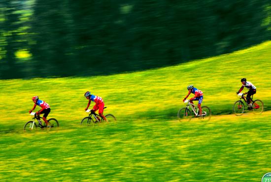罗平油菜花海自行车赛
