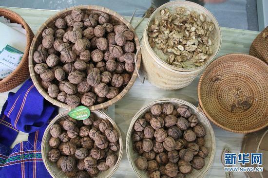 第十三届中国昆明国际农业博览会上的核桃。新华网 念新洪 摄