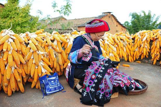 国家级《彝族(撒尼)刺绣》项目代表性传承人:毕跃英