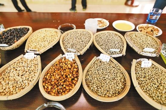 金源丰公司的咖啡豆