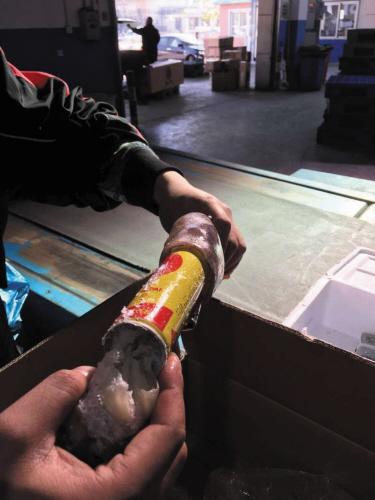 鱿鱼体内藏有打火机充气罐。